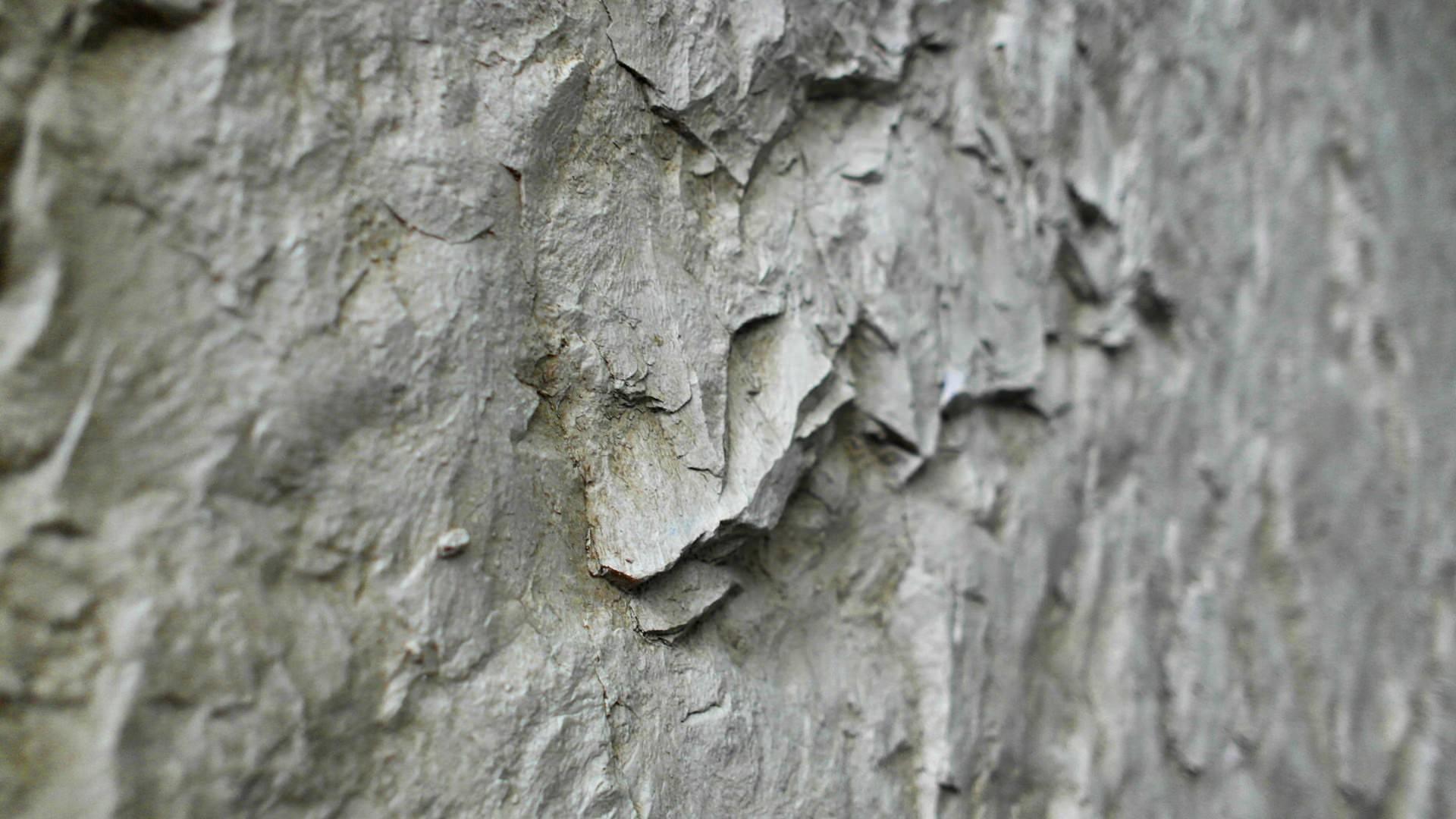 Rocca Ginger Duvar Paneli